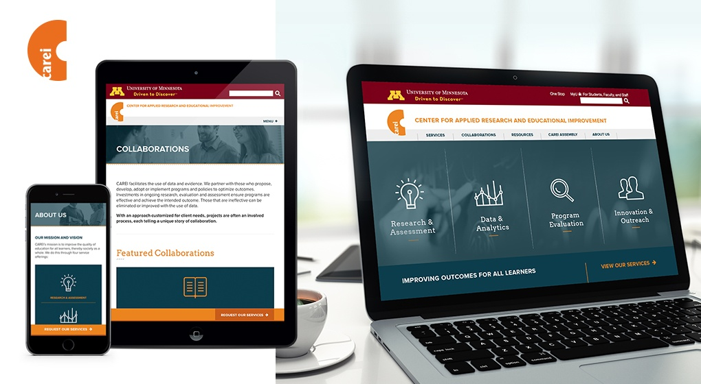 University of Minnesota CAREI Website