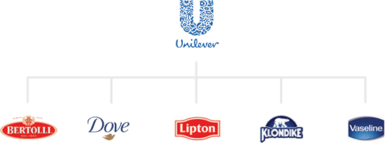 The segmented brand architecture of Unilever.